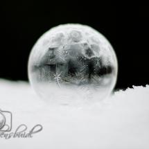 winter-lebensbuidl-veronika-arnold-10-von-10