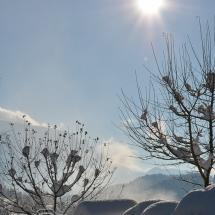 winter-lebensbuidl-veronika-arnold-2-von-10