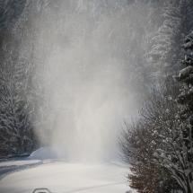 winter-lebensbuidl-veronika-arnold-3-von-10